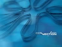 Connection Audison SFA 300