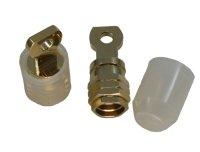 massiver 50 mm² Screw-In Ringkabelschuh, vergoldet