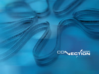 Connection Audison SGT 11